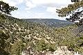 Persephone Nature Trail, Troodos, Cyprus - panoramio (8).jpg