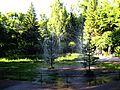 Petrodvorets (Peterhof). Lower Park. fountains of Christmas trees.JPG