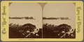 Phillip's Point, Swampscott, from Robert N. Dennis collection of stereoscopic views 2.png