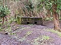 Pill box, Welsh Bicknor - geograph.org.uk - 144897.jpg