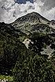 Pirin-2014-MalakVihren01.jpg