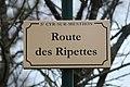 Plaque route Ripettes St Cyr Menthon 2.jpg