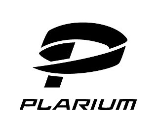 Plarium international software company that designs both mobile and browser games