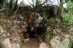 Plovers Lake - A view of the cave entrance to the internal deposits at Plovers Lake.