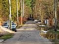 Pludi druvciema 2011 - panoramio (30).jpg
