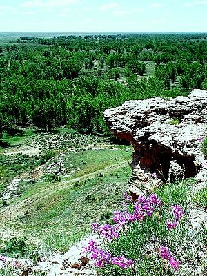 Cimarron National Grassland - Point of Rocks. In the background is the wooded valley of the Cimarron River.