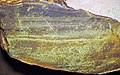 Polymetallic massive sulfide (Middle Tholeiitic Unit, Kidd-Munro Assemblage, Neoarchean, 2.711 to 2.719 Ga; Potter Mine, east of Timmins, Ontario, Canada) 1 (47819995782).jpg