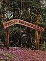 Portal de la Selva - panoramio.jpg