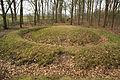 Prehistorische grafheuvels bij Toterfout - Halve Mijl 01.JPG