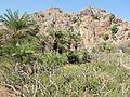 Preveli Gorge, Rethymno Prefecture, Greece (10).jpg
