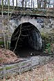Prospect tunnel South portal - geograph.org.uk - 707742.jpg
