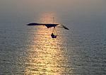 Pt. Fermin Hang Glider 03-1977.jpg