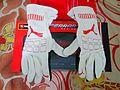 Puma Furio Gloves Ferrari SF15T.jpg