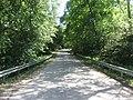 Punia, Lithuania - panoramio (12).jpg