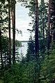 Punkaharju-02-Wald-See-1975-gje.jpg