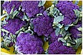 Purple Broccoli at the Green City Market.jpg