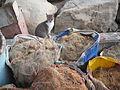 Pussy in fishnets.JPG