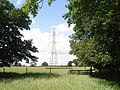 Pylon near Cutpursey Coppice - geograph.org.uk - 472125.jpg