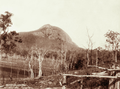 Queensland State Archives 2500 Mount Gravel Fassifern c 1898.png