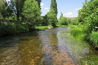 Río Alberche en Ávila 2.jpg