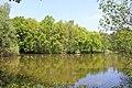 Römersee Heiden.jpg