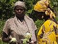 RURAL WOMEN FEEDING AFRICA.jpg