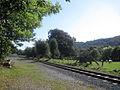 Railway at Cwm Lane looking east - geograph.org.uk - 1482429.jpg