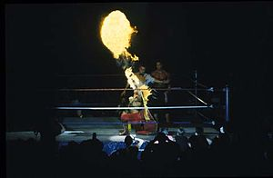 "Ricky Steamboat - Steamboat as ""The Dragon"""