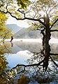 Reflection (70836397).jpeg