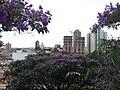 Região da Vila Arens Março 2012. - panoramio.jpg