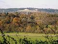 Reigate rural-ness --) (1935075998).jpg