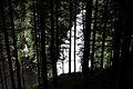 Reinbachfälle taufers 69824 2014-08-21.JPG