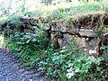 Reste der Klostermauern.jpg