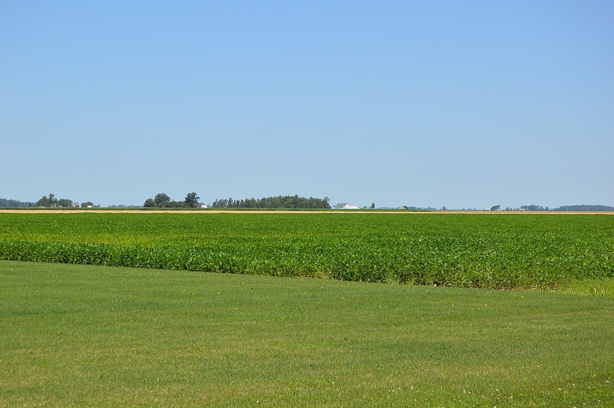 Ohio henry county ridgeville corners - Ohio Henry County Ridgeville Corners 49