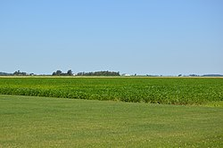 Soybean field in the township's south