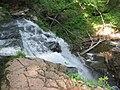 Ricketts Glen State Park Erie Falls 2.jpg