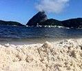 Rio de Janeiro viva la vida.jpg