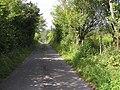 Road at Rassaun East - geograph.org.uk - 1482791.jpg