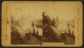 Road to Great Falls, Yellowstone Park, by Artistic Stereoscopic Views.png