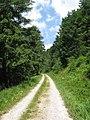 Road up the Schliffkopf (9579007890).jpg
