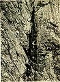 Rock-climbing in the English Lake District (1900) (14590708959).jpg