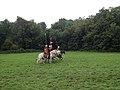 Roman Cavalry Reenactment - Roman Festival at Augusta Raurica - August 2013-016.JPG