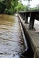 Roman Forest Flood, 4-19-16 at 2-30 PM (26503279176).jpg