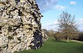 Roman Town of Calleva - geograph.org.uk - 334377.jpg