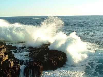 La marée, dit l'adage, monte aussi vite qu'un cheval au galop...