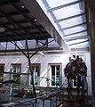 Rosensteinmuseum Stuttgart innen.jpg