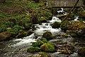 Ruisseau d'Arros (Ariège).jpg