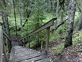 Ryövärinkuopan luonnonsuojelualueen portaat.jpg