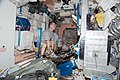 STS-130 T.J. Creamer at advanced Resistive Exercise Device.jpg
