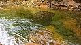 Sabbaday Falls Trail, Kancamagus Hwy, Waterville Valley (494217) (11924606714).jpg